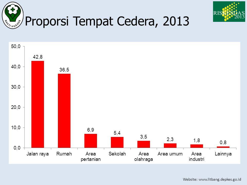 Website: www.litbang.depkes.go.id Proporsi Tempat Cedera, 2013