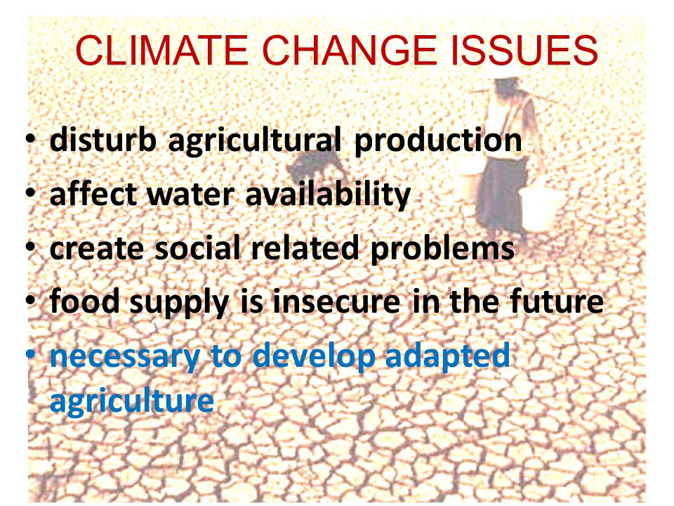 CLIMATE CHANGE ISSUES • disturb agricultural production • affect water availability • create social related problems • food supply is insecure in the future • necessary to develop adapted agriculture