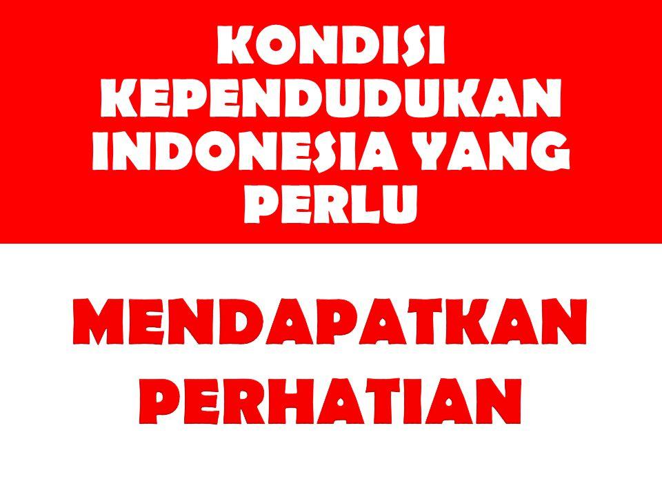 KONDISI KEPENDUDUKAN INDONESIA YANG PERLU