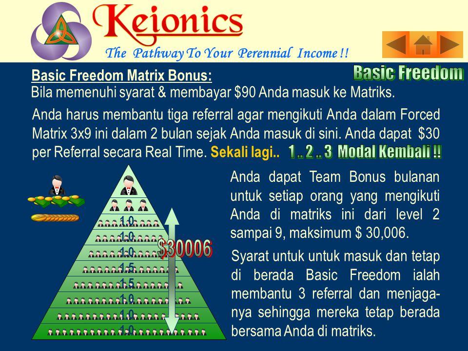 Anda menikmati Referral Bonus dan satu kali Dynamic Bonus bersama dengan sebagai income bulanan sampai $30,006 dari Basic Freedom 3X9 bersamaan dengan LLB yang tak terbatas dari rencana ini pada suatu titik waktu..