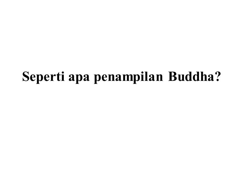 Seperti apa penampilan Buddha?
