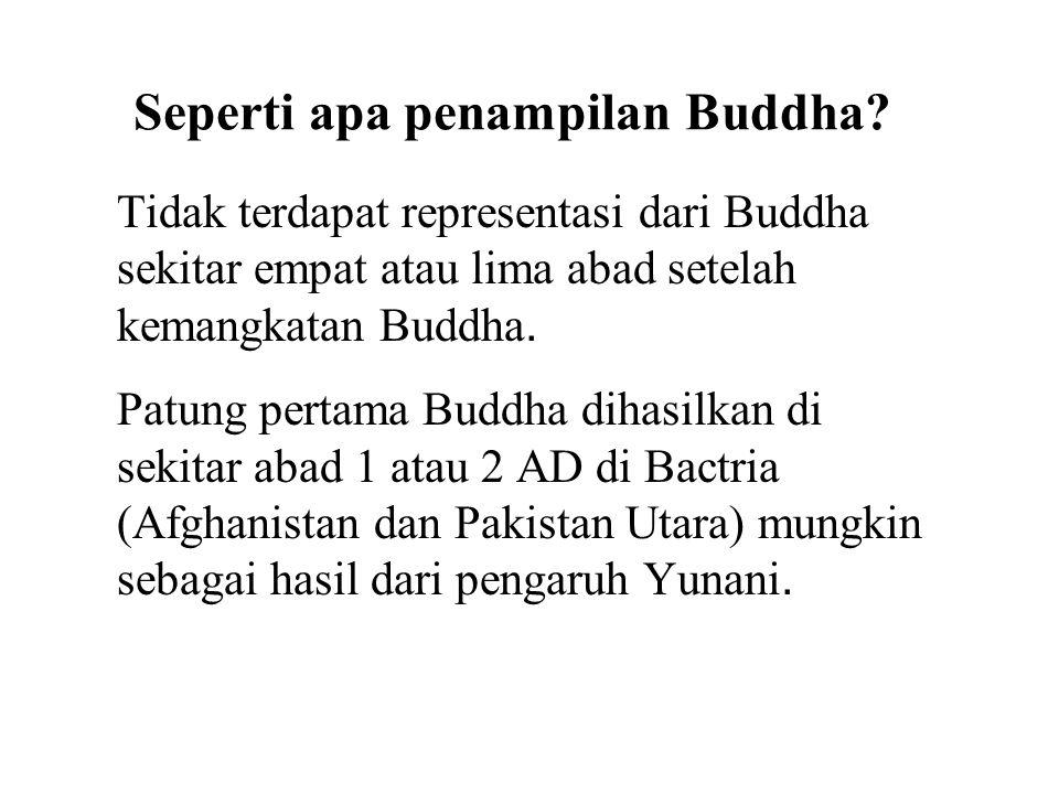 Seperti apa penampilan Buddha? Tidak terdapat representasi dari Buddha sekitar empat atau lima abad setelah kemangkatan Buddha. Patung pertama Buddha