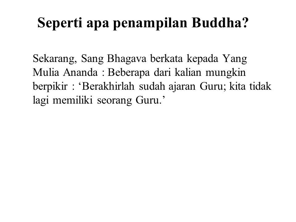 Seperti apa penampilan Buddha? Sekarang, Sang Bhagava berkata kepada Yang Mulia Ananda : Beberapa dari kalian mungkin berpikir : 'Berakhirlah sudah aj