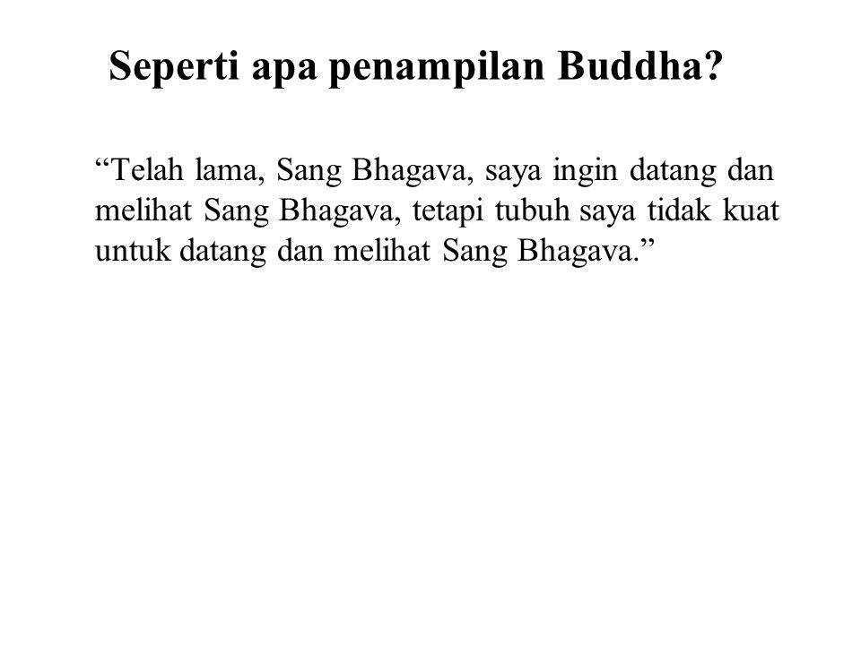 "Seperti apa penampilan Buddha? ""Telah lama, Sang Bhagava, saya ingin datang dan melihat Sang Bhagava, tetapi tubuh saya tidak kuat untuk datang dan me"