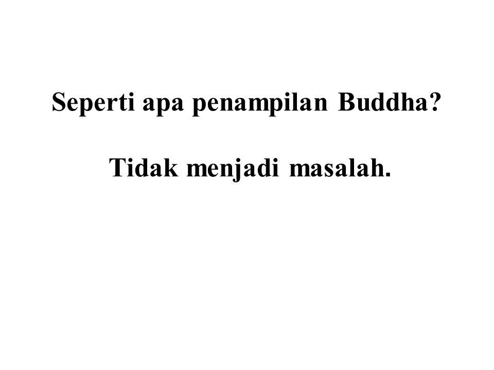 Seperti apa penampilan Buddha? Tidak menjadi masalah. What matters is the Dhamma!