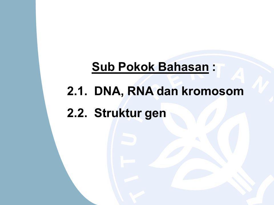 Sub Pokok Bahasan : 2.1. DNA, RNA dan kromosom 2.2. Struktur gen