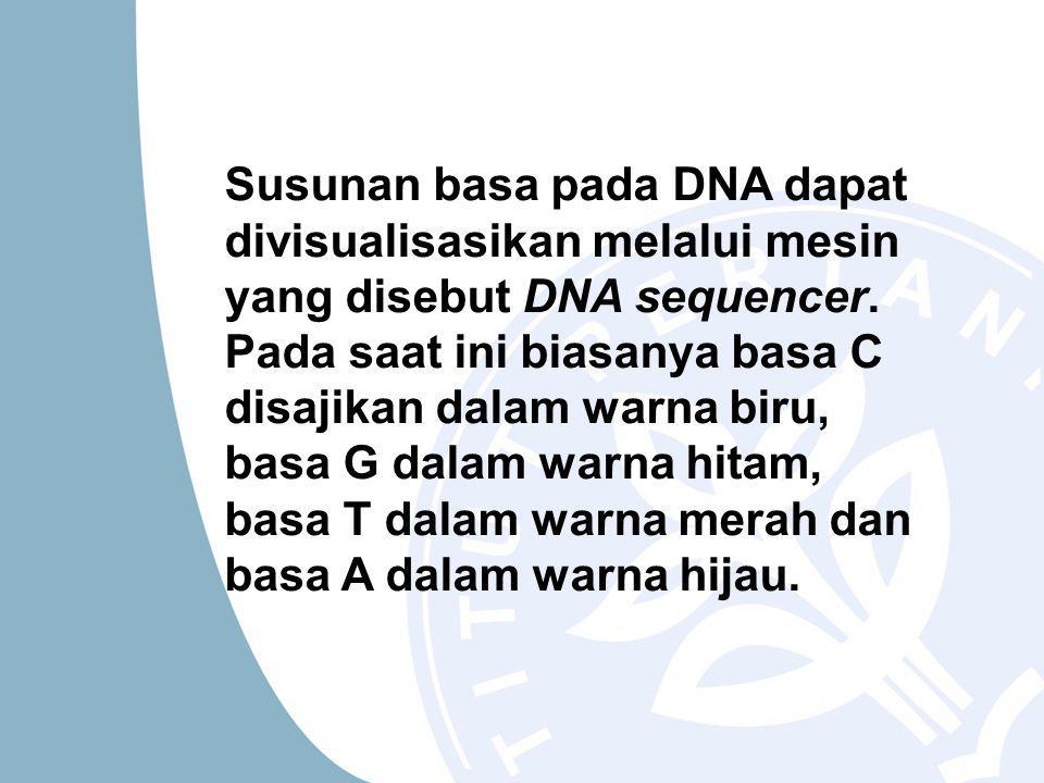 Susunan basa pada DNA dapat divisualisasikan melalui mesin yang disebut DNA sequencer.