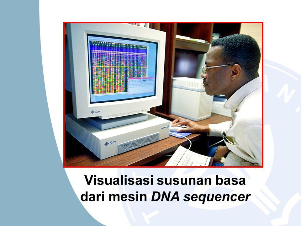 Visualisasi susunan basa dari mesin DNA sequencer