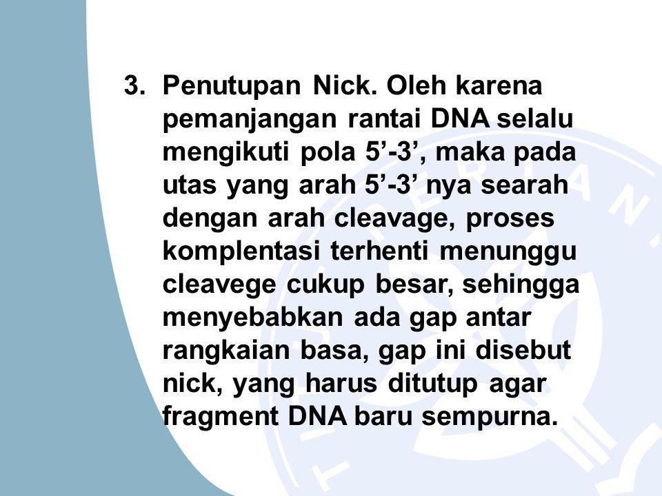 3.Penutupan Nick.