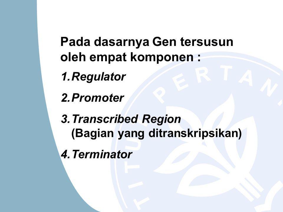 1.Regulator 2.Promoter 3.Transcribed Region (Bagian yang ditranskripsikan) 4.Terminator Pada dasarnya Gen tersusun oleh empat komponen :