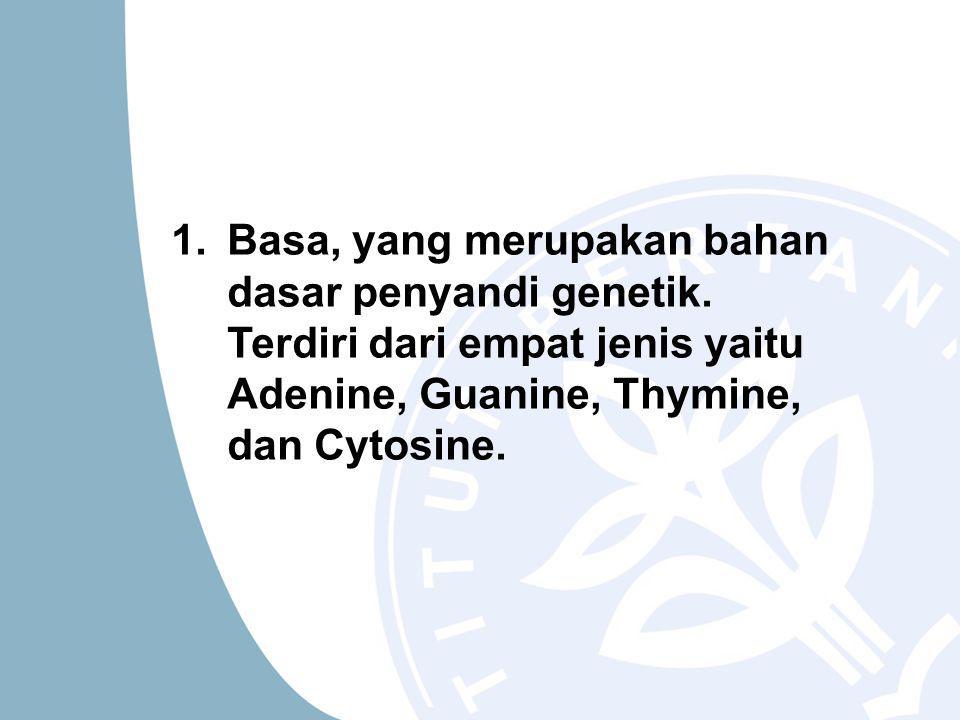1.Basa, yang merupakan bahan dasar penyandi genetik.