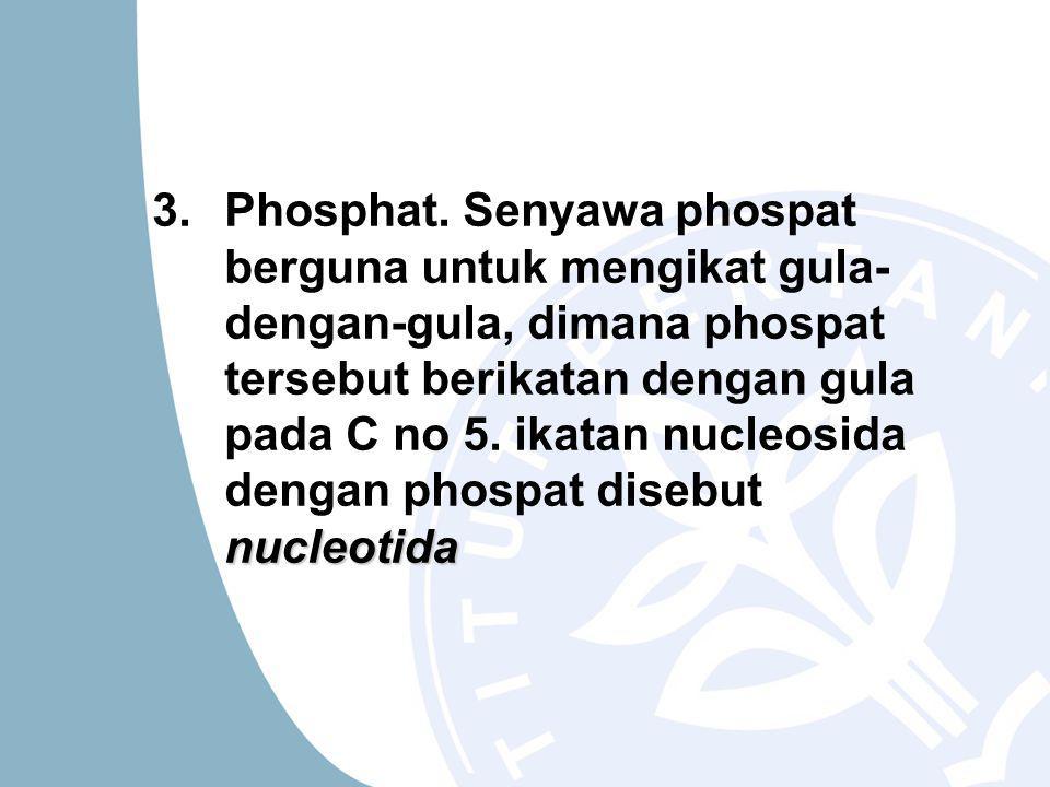 3.Phosphat.