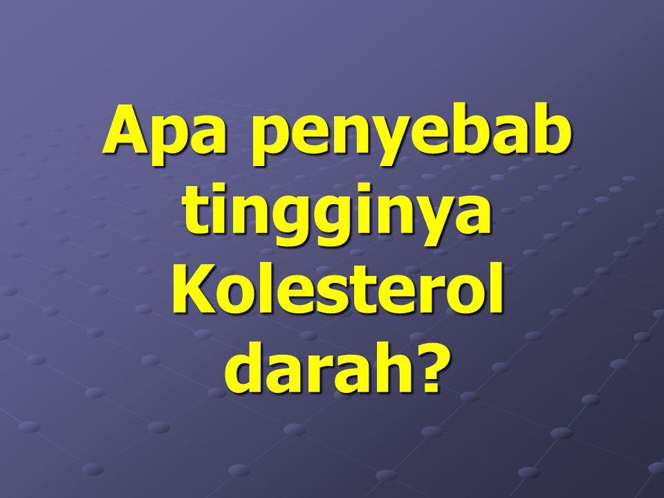 Apa penyebab tingginya Kolesterol darah?