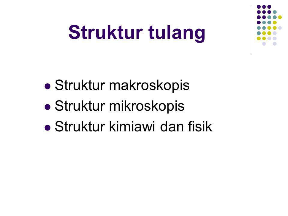Struktur tulang  Struktur makroskopis  Struktur mikroskopis  Struktur kimiawi dan fisik