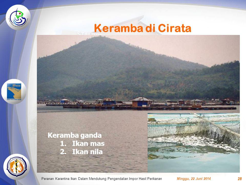 Keramba di Cirata Minggu, 22 Juni 2014Peranan Karantina Ikan Dalam Mendukung Pengendalian Impor Hasil Perikanan 28 Keramba ganda 1.Ikan mas 2.Ikan nila