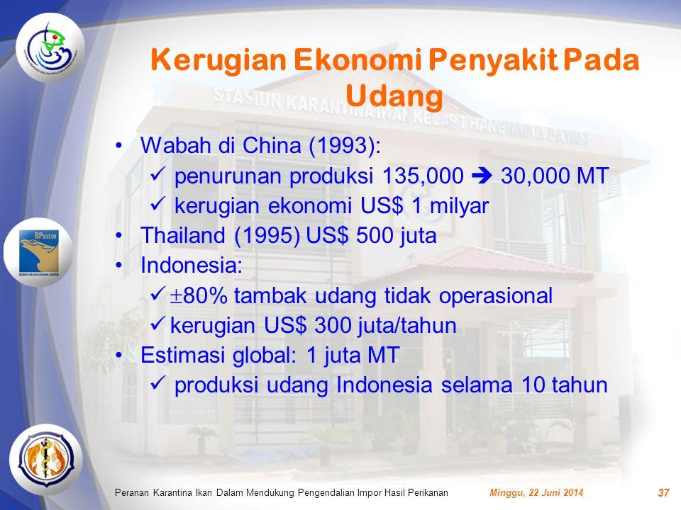 Kerugian Ekonomi Penyakit Pada Udang Minggu, 22 Juni 2014Peranan Karantina Ikan Dalam Mendukung Pengendalian Impor Hasil Perikanan 37 •Wabah di China (1993):  penurunan produksi 135,000  30,000 MT  kerugian ekonomi US$ 1 milyar •Thailand (1995) US$ 500 juta •Indonesia:   80% tambak udang tidak operasional  kerugian US$ 300 juta/tahun •Estimasi global: 1 juta MT  produksi udang Indonesia selama 10 tahun