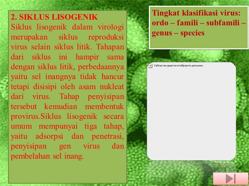 2. SIKLUS LISOGENIK Siklus lisogenik dalam virologi merupakan siklus reproduksi virus selain siklus litik. Tahapan dari siklus ini hampir sama dengan