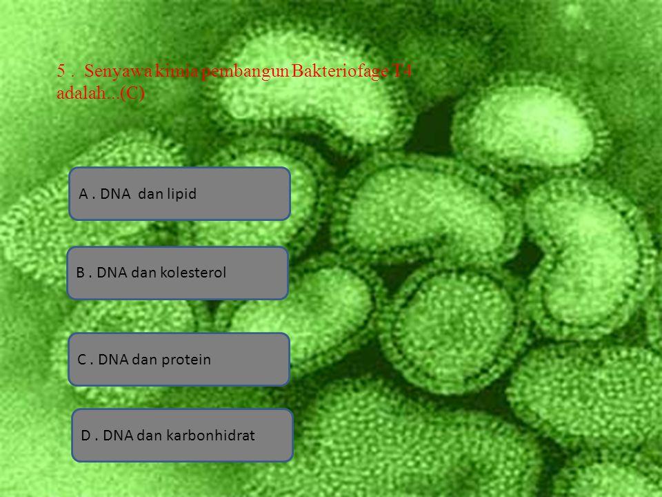 A.DNA dan lipid D. DNA dan karbonhidrat B. DNA dan kolesterol C.