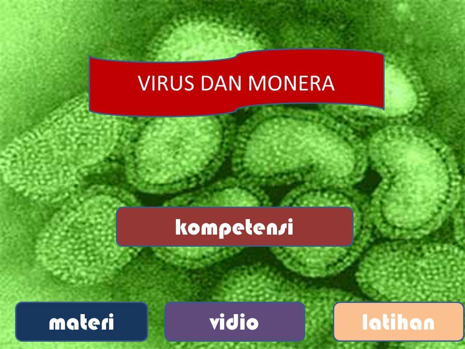 A.Tungro D. TMV B. Papovavirus C. CVPD 9.