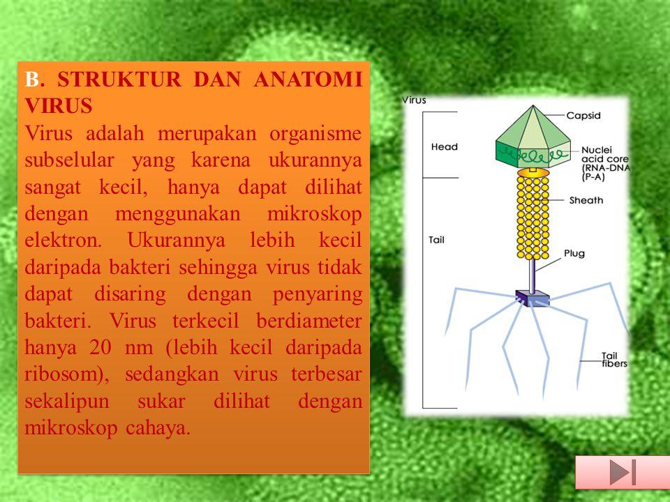 Asam nukleat genom virus dapat berupa DNA ataupun RNA.
