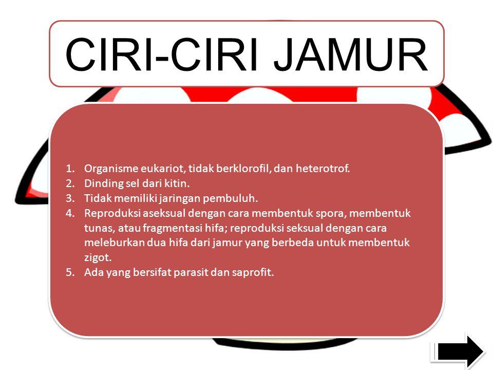CIRI-CIRI JAMUR 1.Organisme eukariot, tidak berklorofil, dan heterotrof.