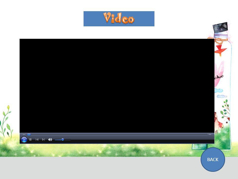 Simulasi VIDEO FLASH BACK
