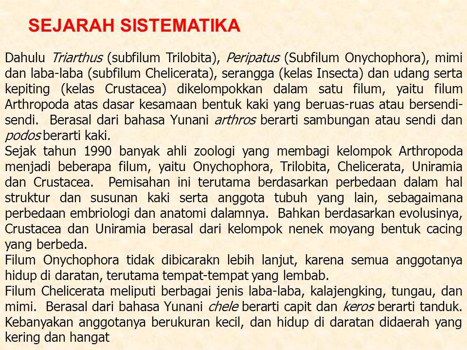 Dahulu Triarthus (subfilum Trilobita), Peripatus (Subfilum Onychophora), mimi dan laba-laba (subfilum Chelicerata), serangga (kelas Insecta) dan udang