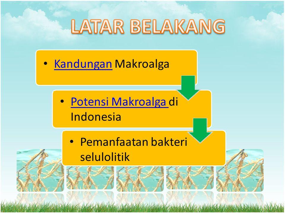 • Potensi Makroalga di Indonesia Potensi Makroalga • Kandungan Makroalga Kandungan • Pemanfaatan bakteri selulolitik