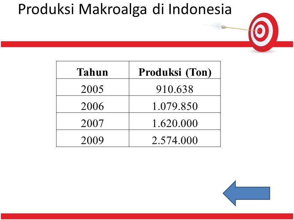 Produksi Makroalga di Indonesia TahunProduksi (Ton) 2005910.638 20061.079.850 20071.620.000 20092.574.000