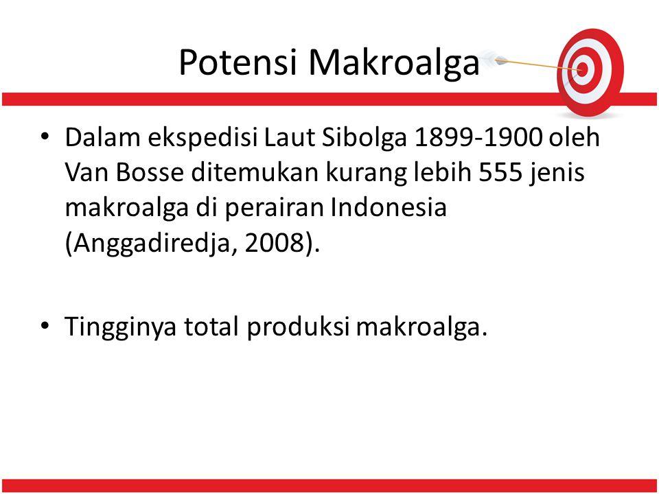 Potensi Makroalga • Dalam ekspedisi Laut Sibolga 1899-1900 oleh Van Bosse ditemukan kurang lebih 555 jenis makroalga di perairan Indonesia (Anggadiredja, 2008).