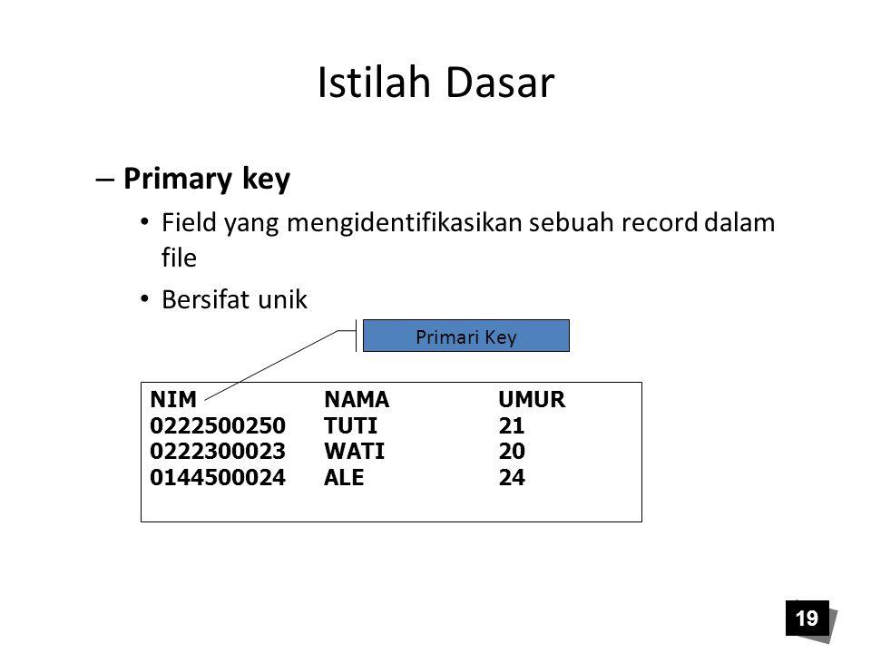 Istilah Dasar – Primary key • Field yang mengidentifikasikan sebuah record dalam file • Bersifat unik NIMNAMAUMUR 0222500250TUTI21 0222300023WATI20 01
