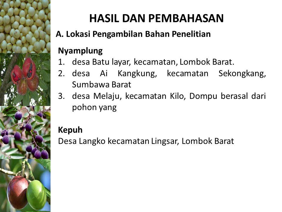 HASIL DAN PEMBAHASAN A. Lokasi Pengambilan Bahan Penelitian Nyamplung 1.desa Batu layar, kecamatan, Lombok Barat. 2.desa Ai Kangkung, kecamatan Sekong