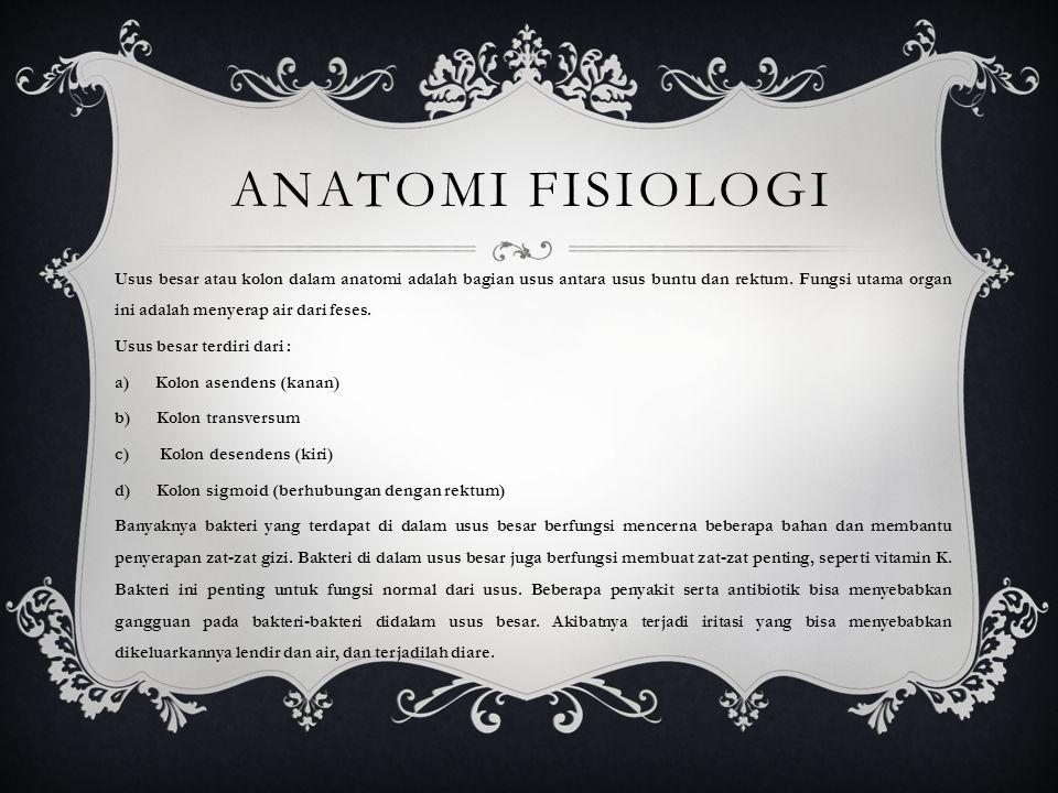 ANATOMI FISIOLOGI Usus besar atau kolon dalam anatomi adalah bagian usus antara usus buntu dan rektum. Fungsi utama organ ini adalah menyerap air dari