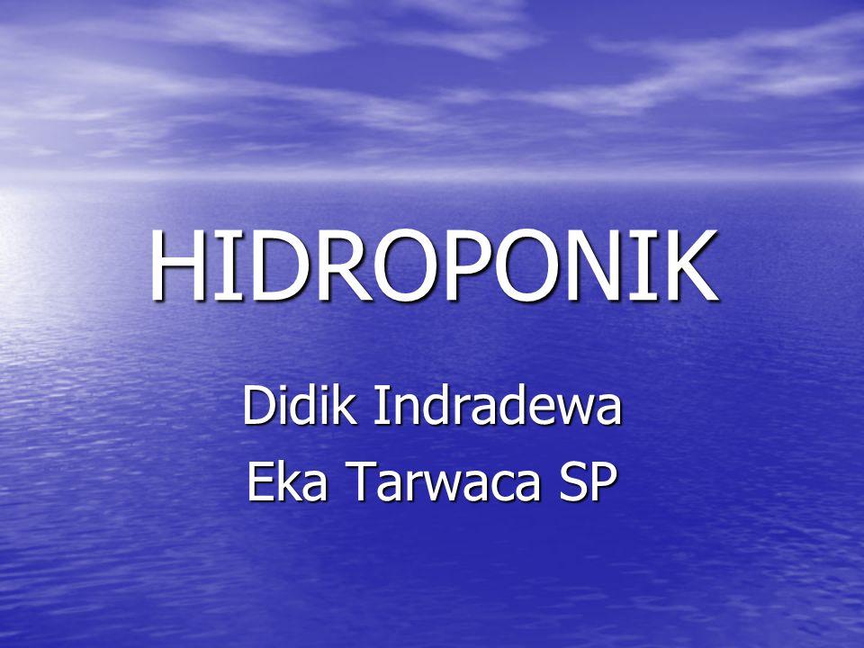 HIDROPONIK Didik Indradewa Eka Tarwaca SP