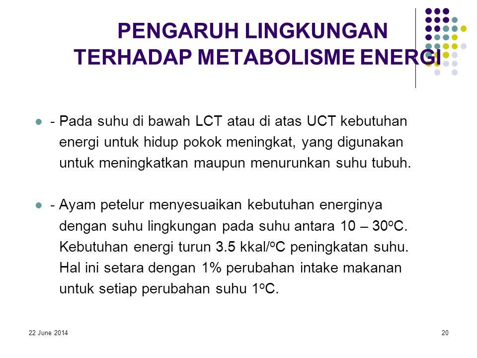 22 June 201420 PENGARUH LINGKUNGAN TERHADAP METABOLISME ENERGI  - Pada suhu di bawah LCT atau di atas UCT kebutuhan energi untuk hidup pokok meningkat, yang digunakan untuk meningkatkan maupun menurunkan suhu tubuh.