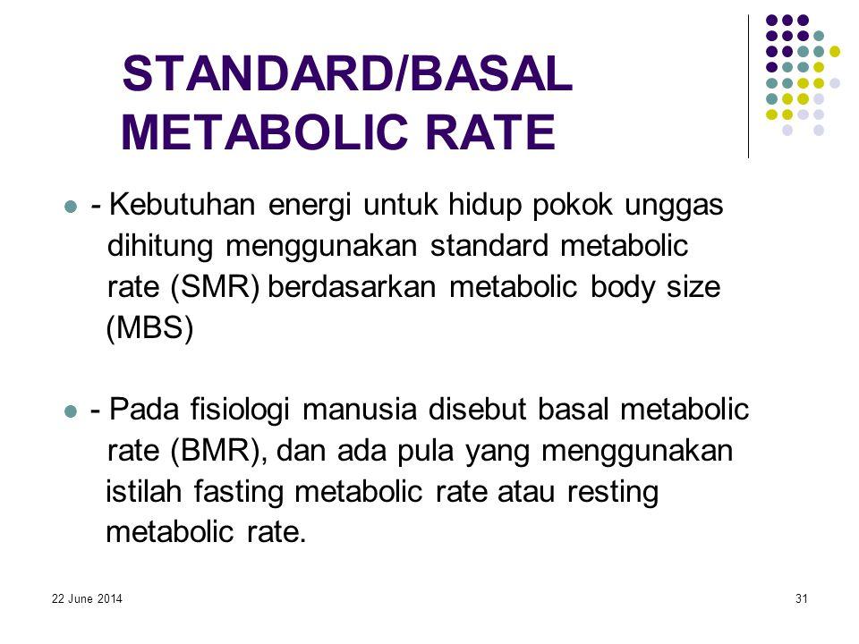 22 June 201431 STANDARD/BASAL METABOLIC RATE  - Kebutuhan energi untuk hidup pokok unggas dihitung menggunakan standard metabolic rate (SMR) berdasarkan metabolic body size (MBS)  - Pada fisiologi manusia disebut basal metabolic rate (BMR), dan ada pula yang menggunakan istilah fasting metabolic rate atau resting metabolic rate.