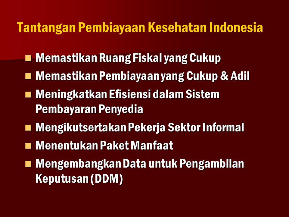 Tantangan Pembiayaan Kesehatan Indonesia  Memastikan Ruang Fiskal yang Cukup  Memastikan Pembiayaan yang Cukup & Adil  Meningkatkan Efisiensi dalam Sistem Pembayaran Penyedia  Mengikutsertakan Pekerja Sektor Informal  Menentukan Paket Manfaat  Mengembangkan Data untuk Pengambilan Keputusan (DDM) 