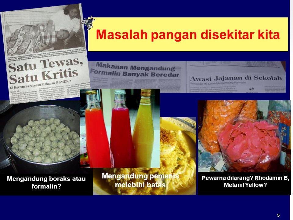Mengandung boraks atau formalin? Pewarna dilarang? Rhodamin B, Metanil Yellow? Masalah pangan disekitar kita Mengandung pemanis melebihi batas 5