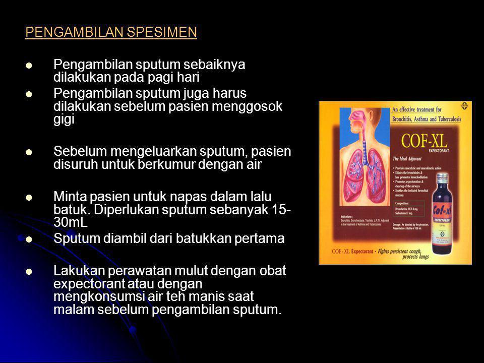 PENGAMBILAN SPESIMEN   Pengambilan sputum sebaiknya dilakukan pada pagi hari   Pengambilan sputum juga harus dilakukan sebelum pasien menggosok gi