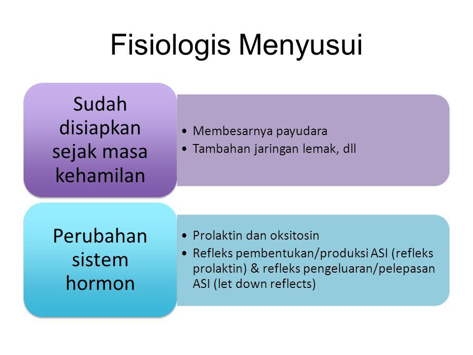 Fisiologis Menyusui •Membesarnya payudara •Tambahan jaringan lemak, dll Sudah disiapkan sejak masa kehamilan •Prolaktin dan oksitosin •Refleks pembent