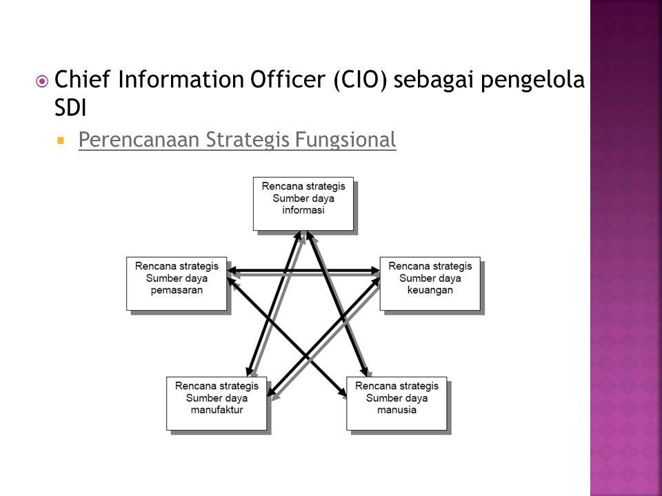  Chief Information Officer (CIO) sebagai pengelola SDI  Perencanaan Strategis Fungsional