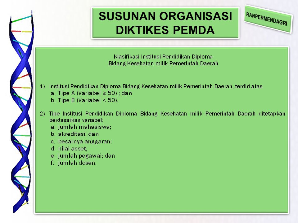 SUSUNAN ORGANISASI DIKTIKES PEMDA