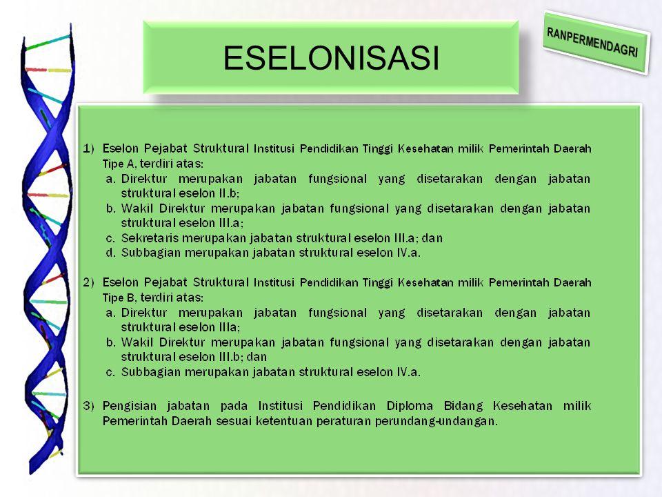 ESELONISASI