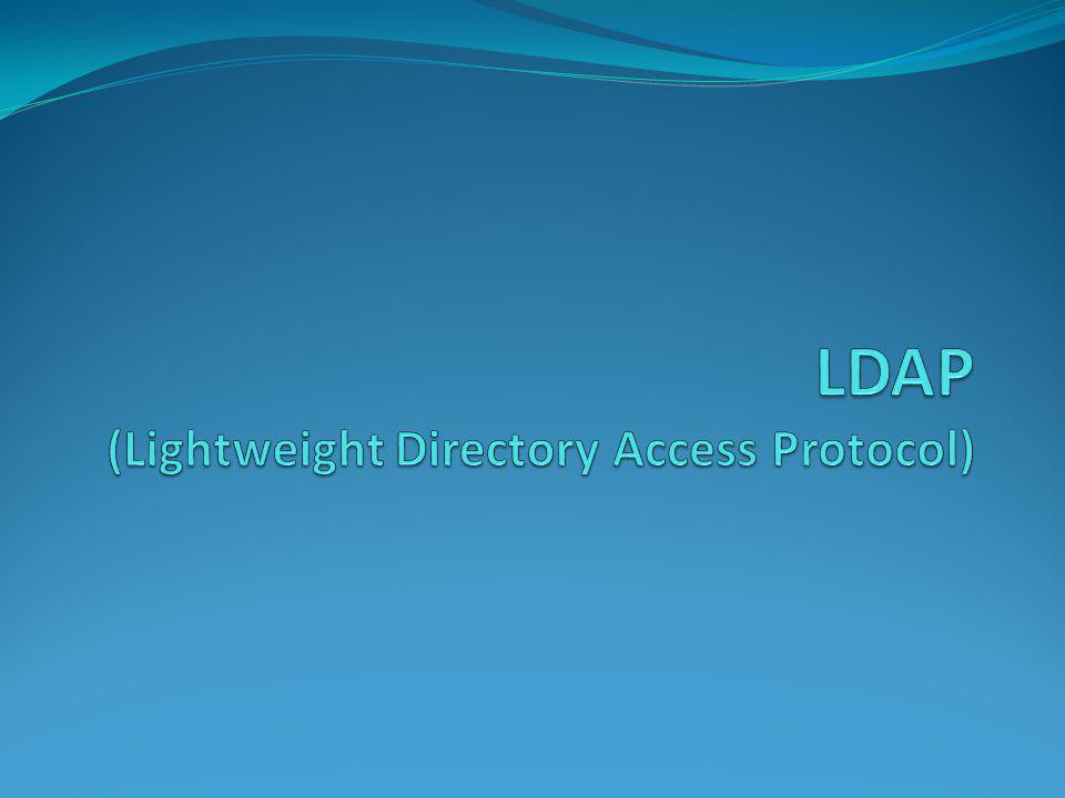What is LDAP.