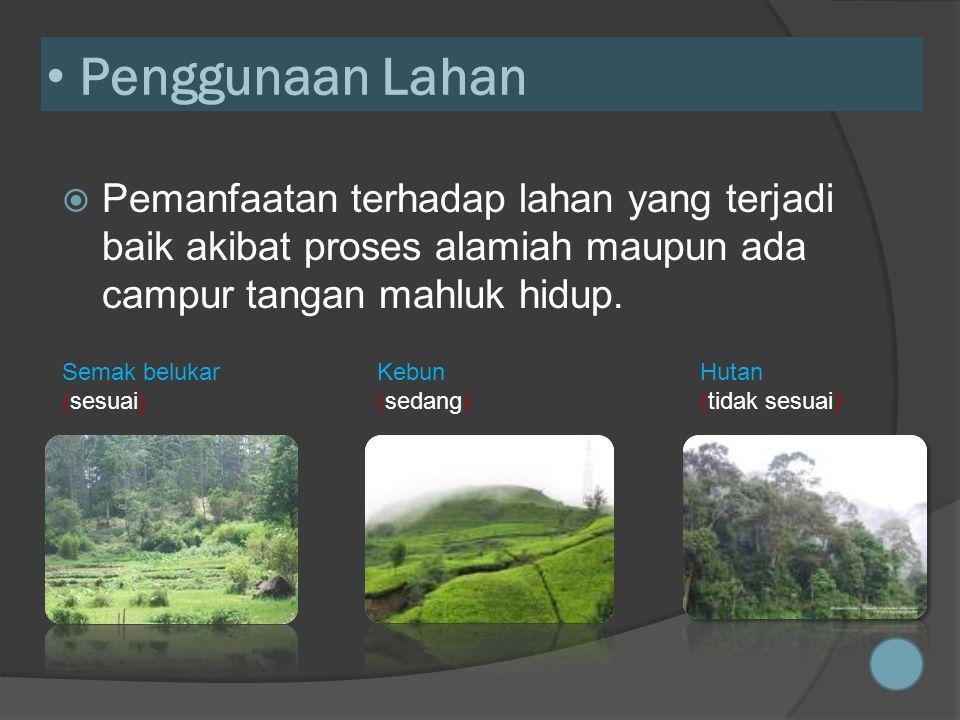 • Penggunaan Lahan  Pemanfaatan terhadap lahan yang terjadi baik akibat proses alamiah maupun ada campur tangan mahluk hidup.