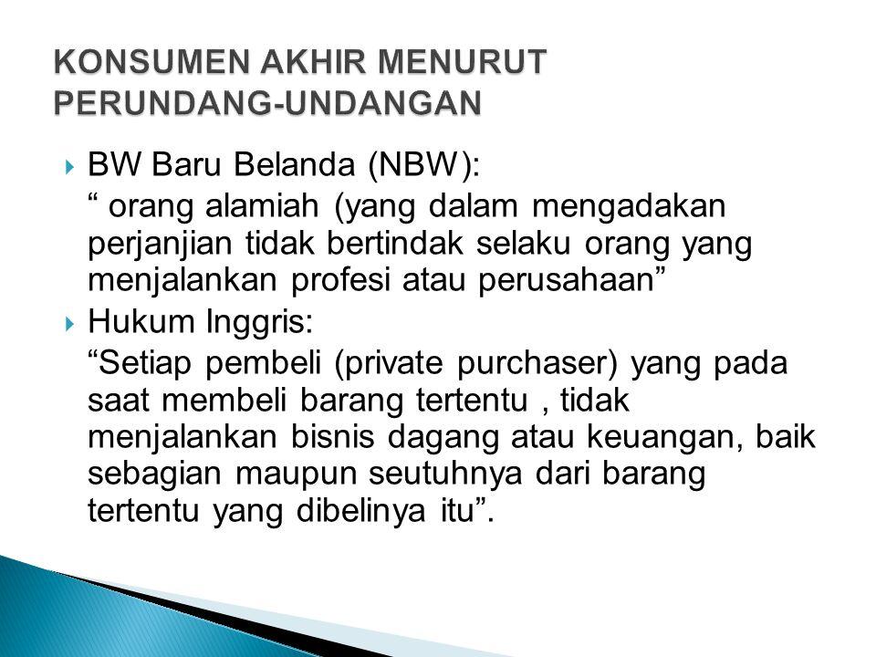 """ BW Baru Belanda (NBW): """" orang alamiah (yang dalam mengadakan perjanjian tidak bertindak selaku orang yang menjalankan profesi atau perusahaan""""  Hu"""