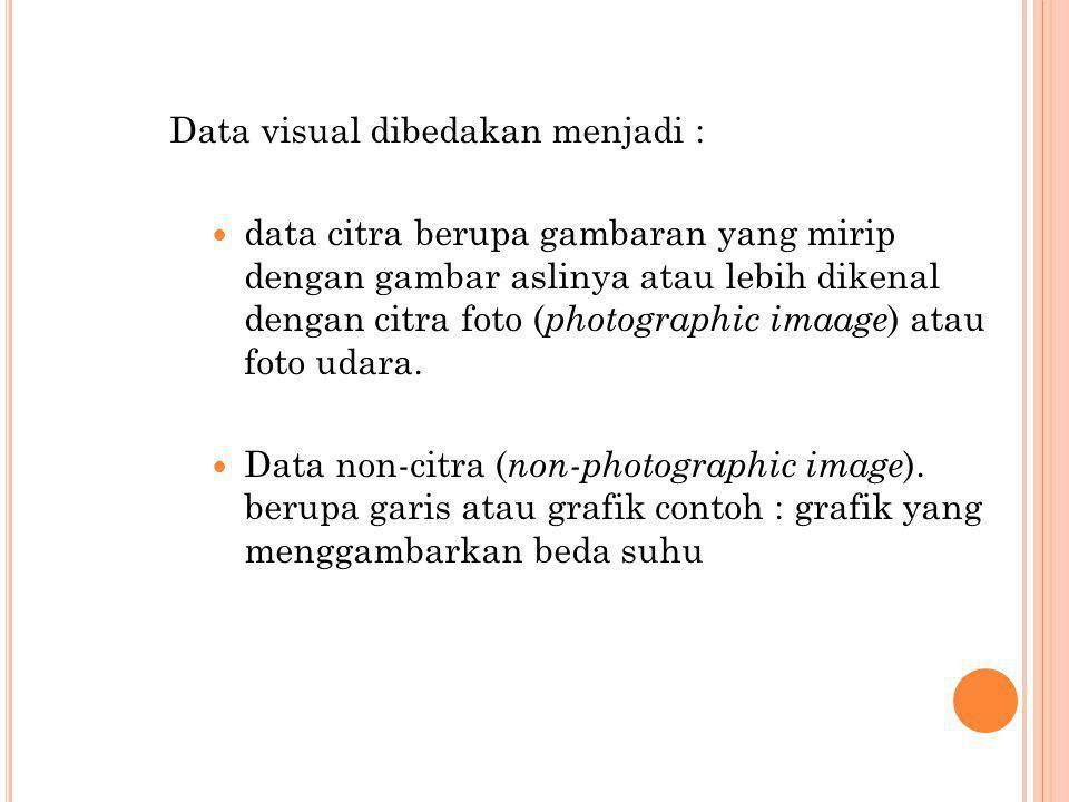 Data visual dibedakan menjadi :  data citra berupa gambaran yang mirip dengan gambar aslinya atau lebih dikenal dengan citra foto ( photographic imaa