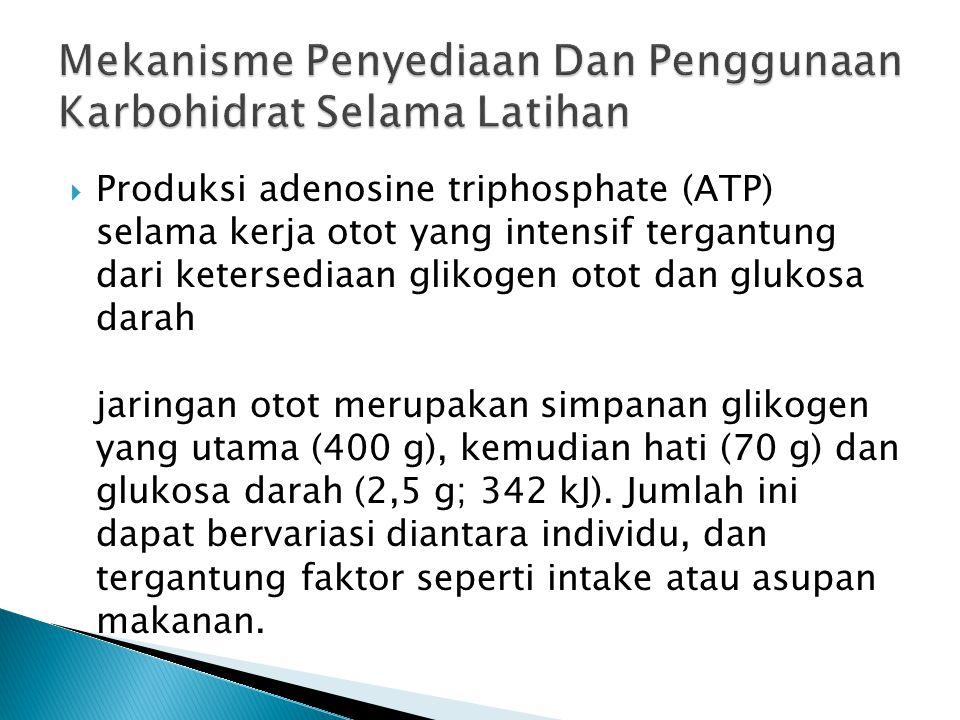  Produksi adenosine triphosphate (ATP) selama kerja otot yang intensif tergantung dari ketersediaan glikogen otot dan glukosa darah jaringan otot mer