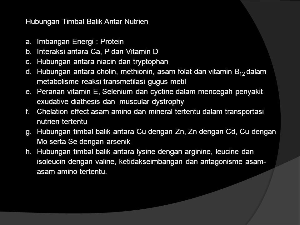 Hubungan Timbal Balik Antar Nutrien a.Imbangan Energi : Protein b.Interaksi antara Ca, P dan Vitamin D c.Hubungan antara niacin dan tryptophan d.Hubun
