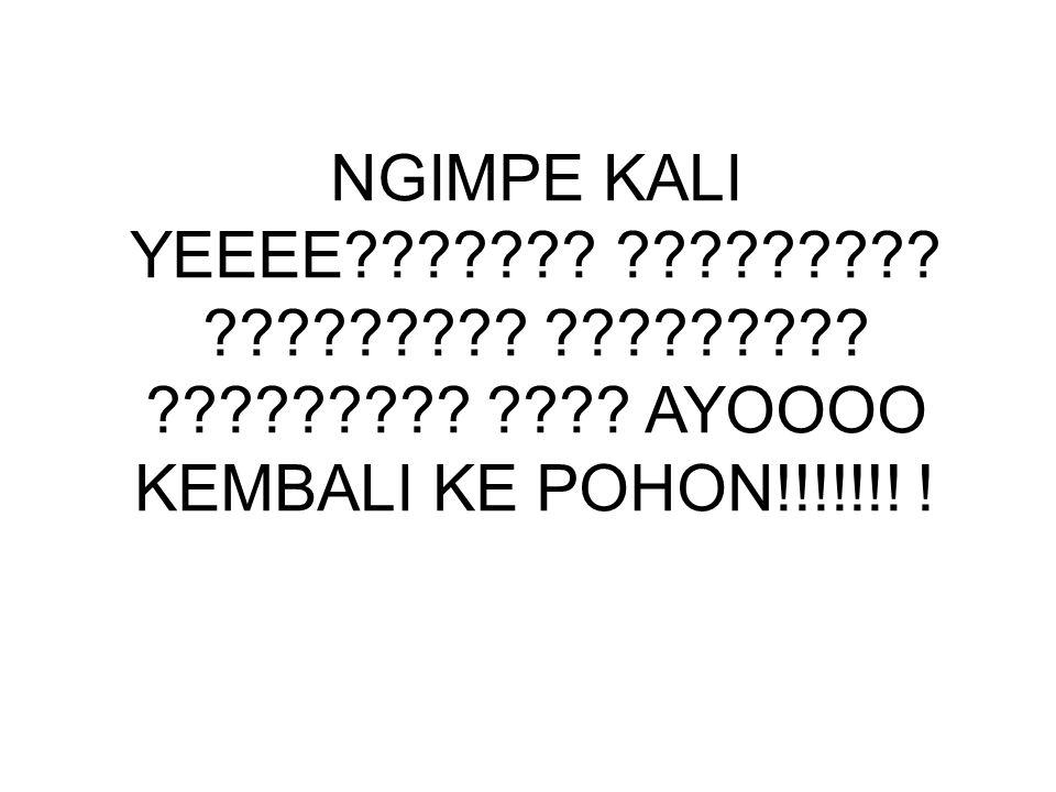 NGIMPE KALI YEEEE . . . .